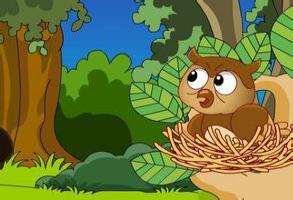 斑鸠与猫头鹰的故事_猫头鹰与斑鸠的故事